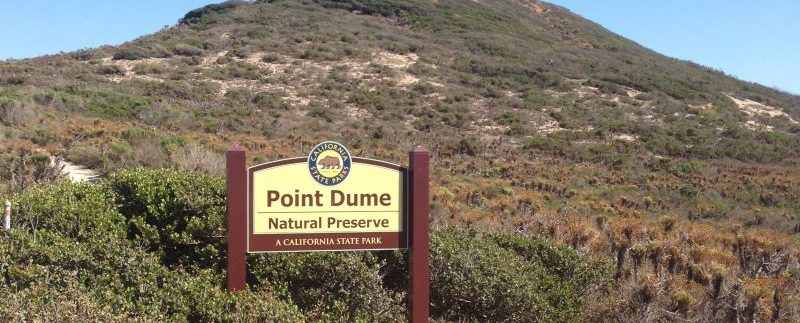 Point Dume Real Estate: Your Future Home is Calling